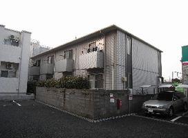 スペラール花京院